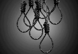 stop-execution