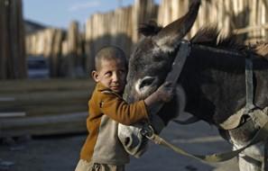 afganskie-deti-6-6-990x633