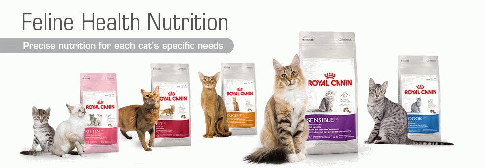 Купить сухой корм для кошек,интернет магазин сухих кормов